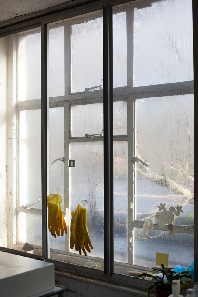 Wolfgang Tillmans, Wet Room, Gloves, 2010 / Courtesy Galerie Buchholz, Berlin/Cologne