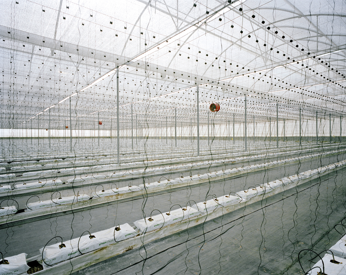 Armin Linke, Greenhouse, El Ejido / Spain, 2013 © Armin Linke, Photo: Courtesy of the artist