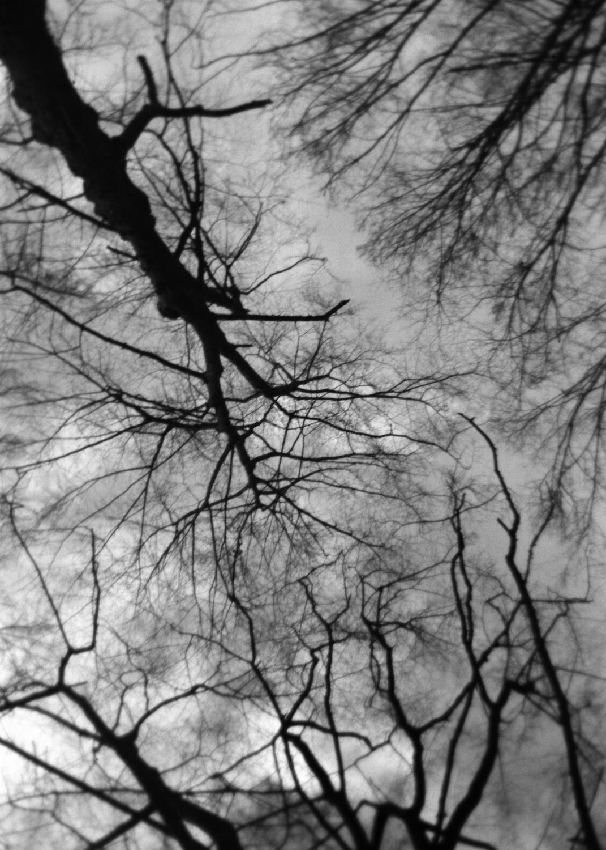 "© Sonya Schönberger, from the series ""Den Trümmern zum Trotze"", 2012–2017, Agfa box camera photography, Edition 1/2 / Courtesy Katharina Maria Raab Galerie, Berlin"