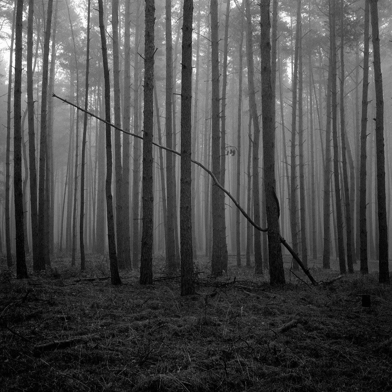 © Claire Laude, L'autre Cendre  #1