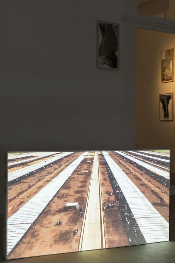 "© Lukas Marxt ""Imperial Valley"" (cultivated run-off), Galerie Reinthaler, 2017 / Photo: George Kaulfersch"