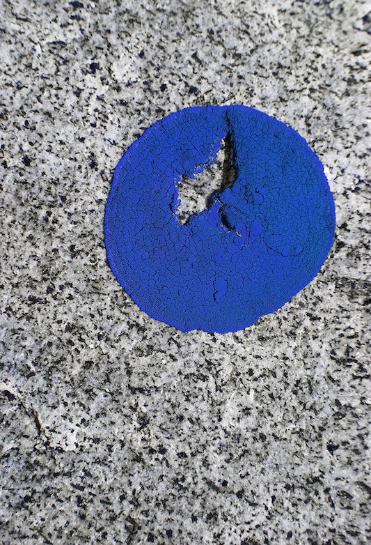 © Jessica Backhaus, Blue Note, 2015