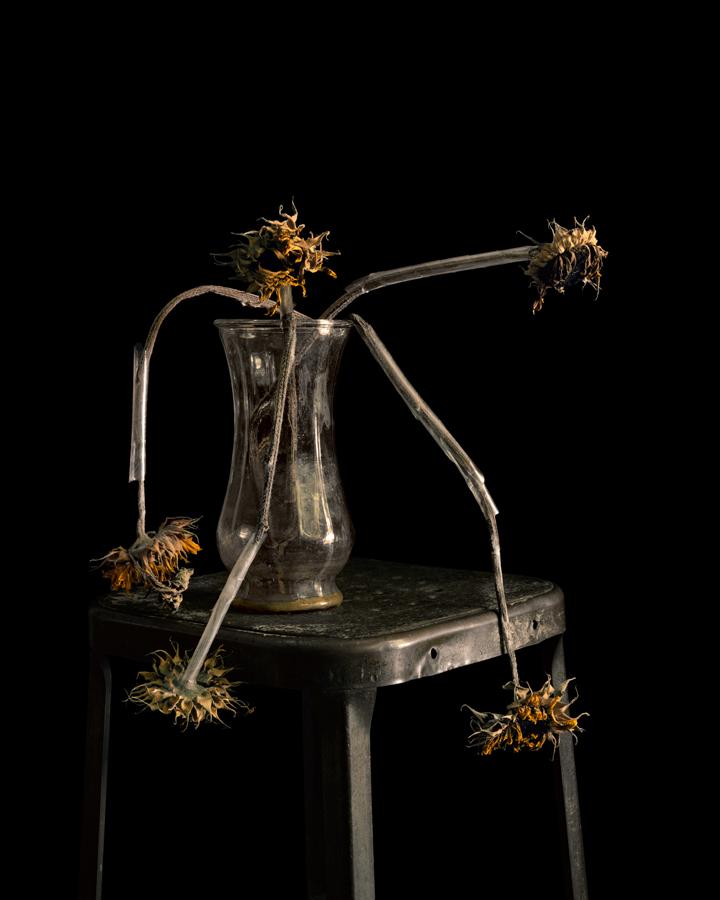 © Brigitte Lustenberger, FLOWERS XXII / Courtesy Christophe Guye Gallery