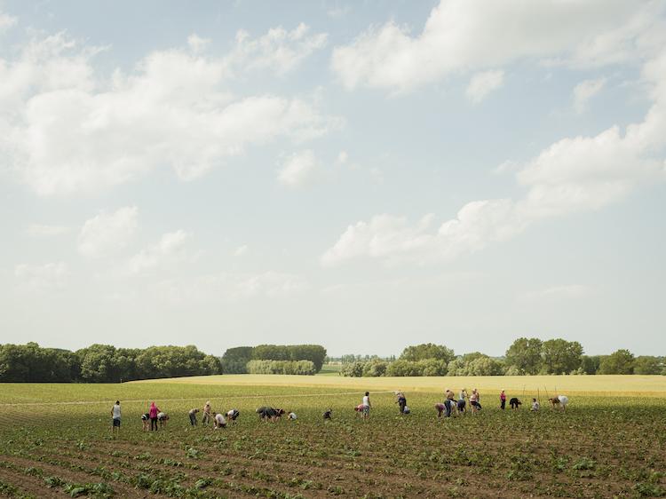 """© Peter Bialobrzeski, bei Wismar, 2012, aus der Serie """"Die zweite Heimat"""""""