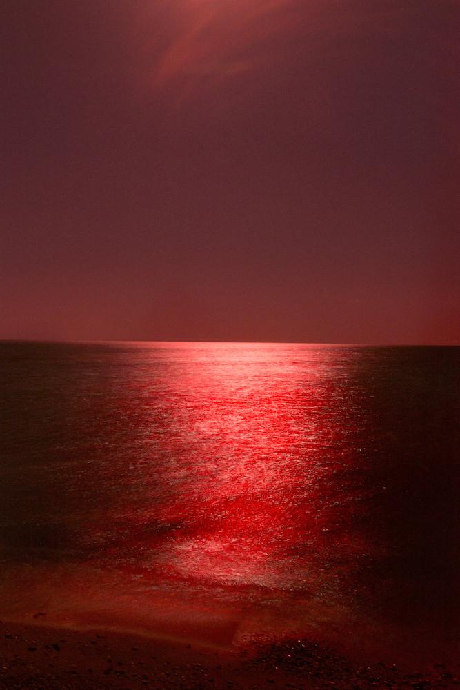 "© Michael Danner ""MIGRATION AS AVANT-GARDE"""