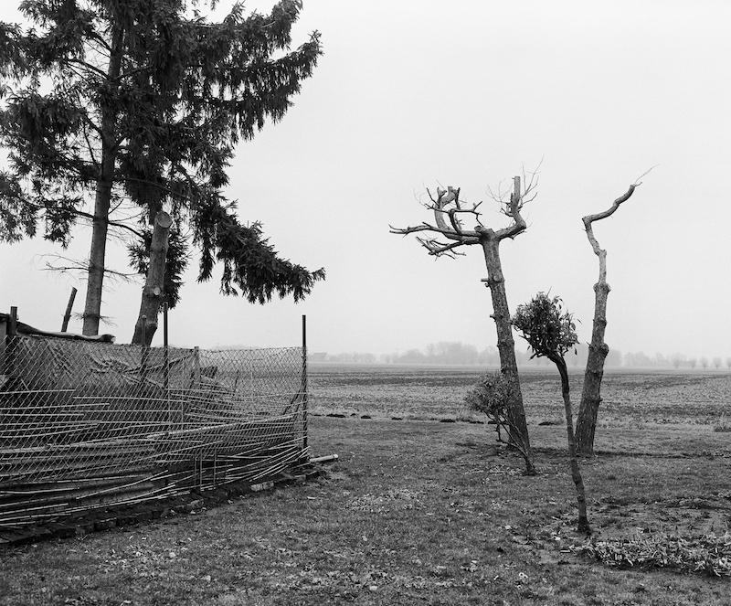 Ingar Krauss, Gartenstück, Oderbruch (2017) © Ingar Krauss